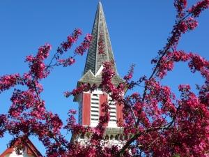 HI spire in spring