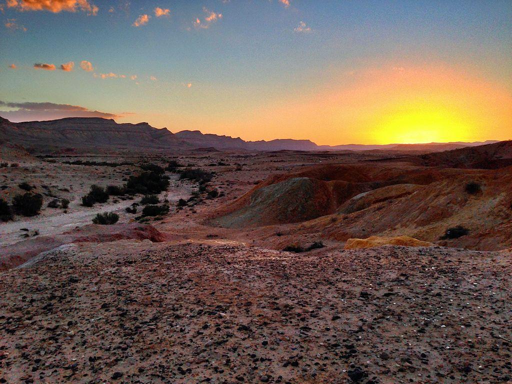 Negev desert